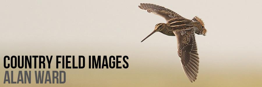 www.countryfieldimages.co.uk
