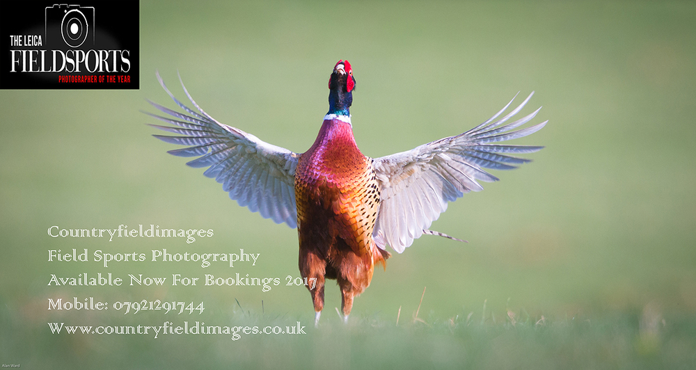 www.countryfieldimages.co.uk